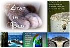 zitat-im-bild-n-334 - wortperlen - designblog